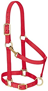 Weaver Leather Basic Adjustable Chin and Throat Snap Halter, Small Horse Size, Red