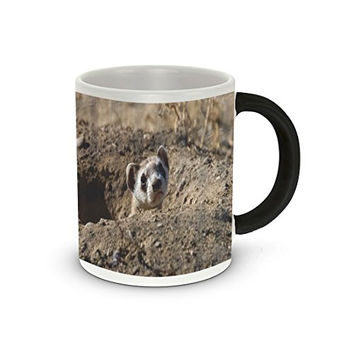 Rikki Knight Black Footed Ferret Design Heat Sensitive Color Change 11 oz Photo Quality Ceramic Coffee Mug Cup