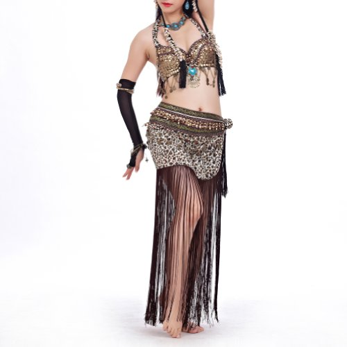 BellyLady Belly Dance Gypsy Costume, Bra & Leopard Print Skirt, Halloween Costume