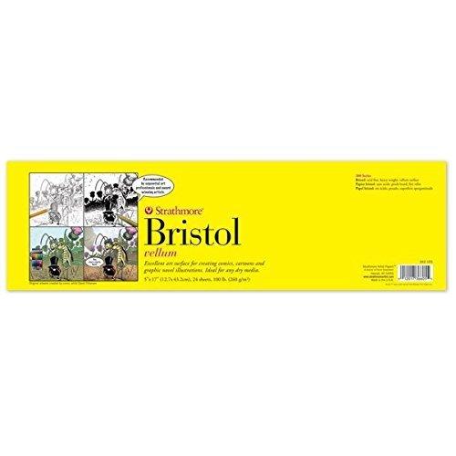 "Strathmore 300 Sequenziale arte Bristol Pad 5"" x 17"" 24 fogli 270g"
