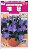 【種子】桔梗 センチメンタルブルー 0.1ml