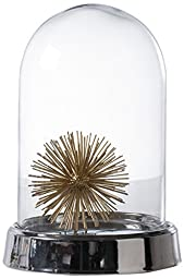 Torre & Tagus 902001 Loris Glass Bell Jar Cloche by Torre & Tagus