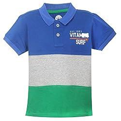Vitamins Boys' T-Shirt (08Tb-447-2-Ink.Blue_Dark Blue_2 - 3 Years)
