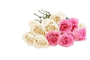 Bouquet of Long Stemmed Pink and White Roses (Dozen) - Without Vase