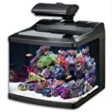 Oceanic 36015 BioCube HQI Aquarium, 29-Gallon