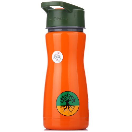 Eco Vessel Frost Kids Insulated Stainless Steel Water Bottle with Flip Straw (13-Ounce, Orange with Tree)