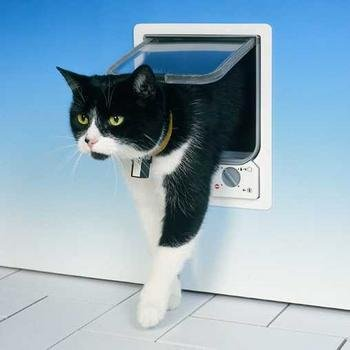 Elektronische Katzenklappe von CAT MATE in grau, kein Zugang für fremde Haustiere!