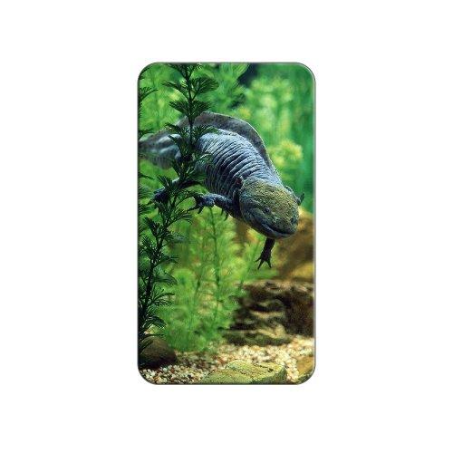 Axolotl-mexikanischen Salamander-Wasser Monster Metall Revers Hat Shirt Handtasche Pin Krawattennadel Pinback
