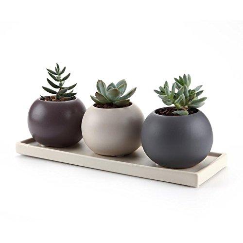 t4u-75-cm-in-ceramica-cameo-doppio-strato-howllow-design-sucuulent-vaso-cactus-vaso-con-piattino-vio