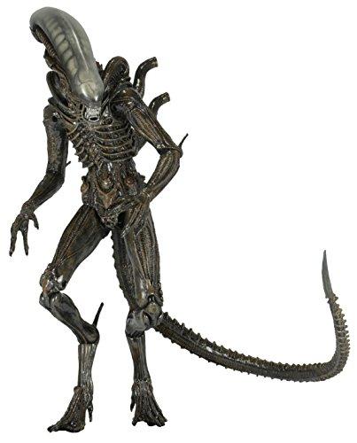 """NECA Aliens - Series 6 Isolation Xenomorph Action Figure (7"""" Scale)"""