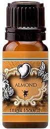 Almond Premium Grade Fragrance Oil  10ml  Scented Oil