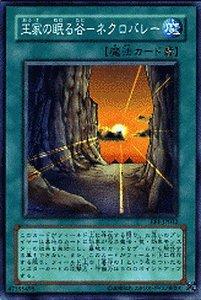 【遊戯王カード】 王家の眠る谷?ネクロバレー 【スーパー】 EE1-JP032-SR