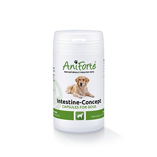 aniforte-intestine-concept-50-capsules-natural-product-for-dogs