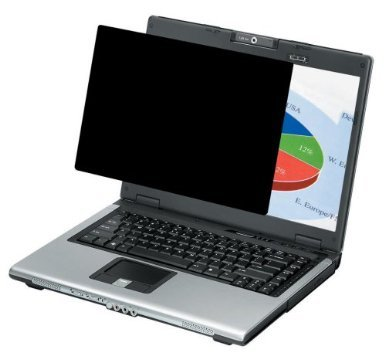 Fellowes Flat Panel Privacy Filter For 15.0-Inch Laptop (4800101)