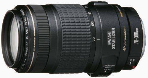 Canon EFレンズ EF70-300mm F4-5.6 IS USM ズームレンズ 望遠