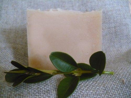 Tea Tree Goat Milk Soap 10 Bars Made In Maine
