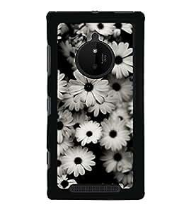 Beautiful White Flowers 2D Hard Polycarbonate Designer Back Case Cover for Nokia Lumia 830 :: Nokia Lumia 830 RM-984