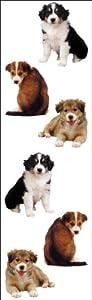 Stickers-chiots de Mme Grossman