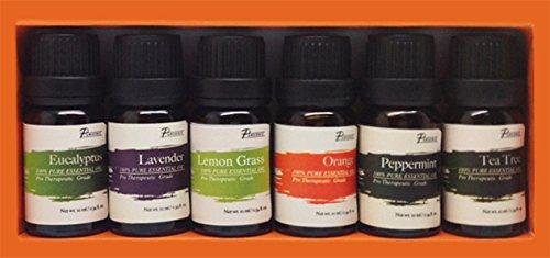 Pursonic-100-Pure-Essential-Aromatherapy-Oils-Gift-Set-6-Pack-10MLEucalyptus-Lavender-Lemon-grass-Orange-Peppermint-Tea-Tree