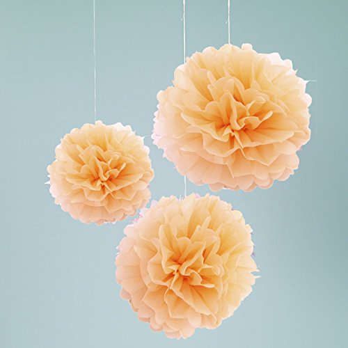 Set Of 3 Peach Party Tissue Pom Poms Wedding Anniversary Party Bridal Shower Party Hanging Decoration Favor