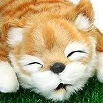 笑い転げる猫 こげ茶