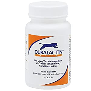 duralactin feline chronic inflammation support 60 capsules pet bone and joint. Black Bedroom Furniture Sets. Home Design Ideas