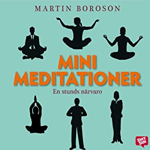 Minimeditationer: en stunds närvaro [Mini Meditations: A Moment of Presence] | [Martin Boroson, Erik Nisser (Translator)]