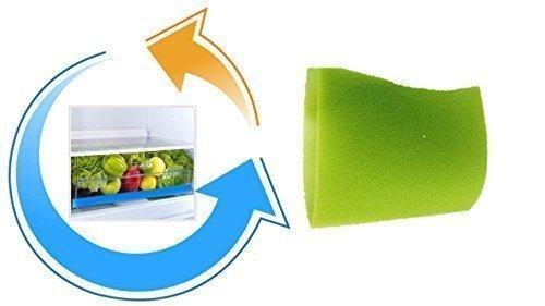 Mat de fixation fraîche pour Bacs à légumes 47x30 cm vert