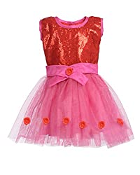 RoopRahasya Girls' Net Designer Dress Frock_RDPN119_6Y_Red & Pink