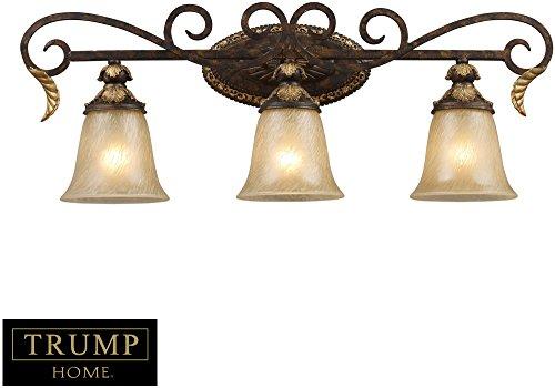 Trump Home Regency 3-Light Vanity Bar In Burnt Bronze