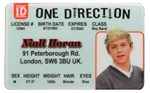 Niall Horan Id - One Direction Band from IncredibleGifts