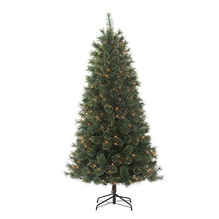 Donner and Blitzen, Inc 6.5' Westchester Slim Cashmere Pine Pre-lit Christmas Tree with 350 Clear Lights (Pine Tree Plug compare prices)