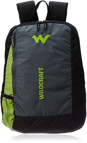 Wildcraft-Streak-Nylon-20-Ltrs-Green-Laptop-Bag-8903338009542