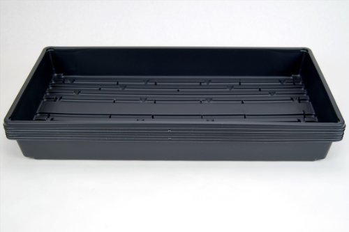 5 Pack of Durable Black Plastic Growing Trays (with drain holes) 20″ x 10″ x 2″ – Planting Seedlings, Flowers, Wheatgrass, Microgreens