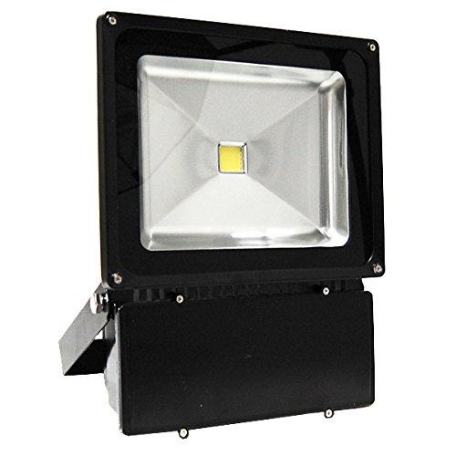 blef120v100dl 120 volt 100 watt led outdoor flood light day ligh. Black Bedroom Furniture Sets. Home Design Ideas