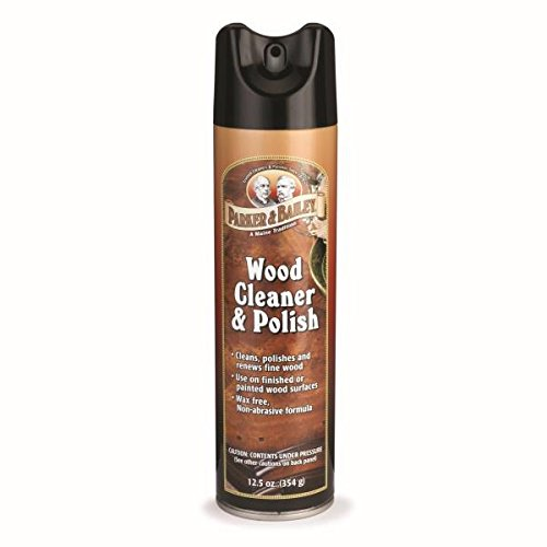 Parker Bailey cleaning product Wood Cleaner & Polish Aerosol Spray, 125 oz (Endust Furniture Spray compare prices)