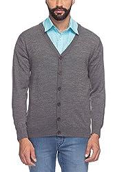 Raymond Men's Woolen Sweater (8907252512935_RMWX00367-G7_40_Grey)