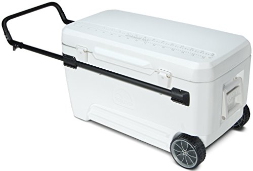Igloo Glide PRO Cooler (110-Quart, White) (White Roller Cooler compare prices)
