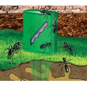 TERRO Outdoor Liquid Ant Bait Stakes In Use