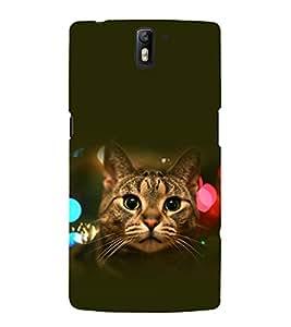 printtech Cat Bokeh Lights Back Case Cover for OnePlus One / One plus one / Oneplus 1 / One Plus 1
