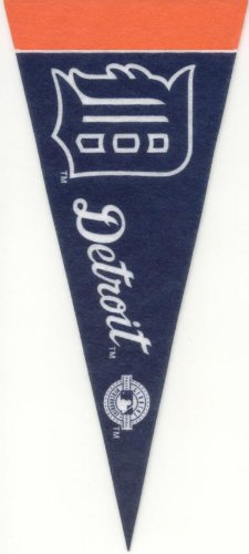 Detroit Tigers Mini Felt Pennant & Torii Hunter Mini Fathead 2014