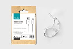 Romoss Apple Charging Cable for Ios7/8 / iPhone / iPad (CB12)