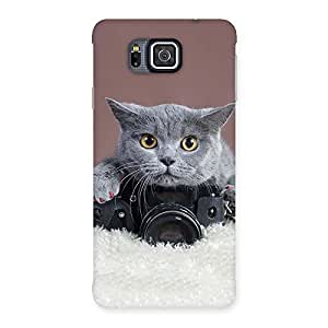 Special Kitty Photographer Multicolor Back Case Cover for Galaxy Alpha