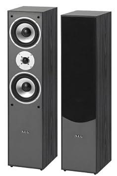 AEG LB 4711 Haut-parleur vertical Puissance 500 W Noir (Import Allemagne)
