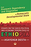 img - for From Economic Dependency and Stagnation to Democratic Developmental State: Essays on the Socio-Political and Economic Perspectrives on Ethiopia book / textbook / text book