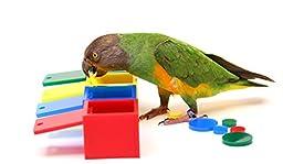 Birdie Colored Boxes Trick