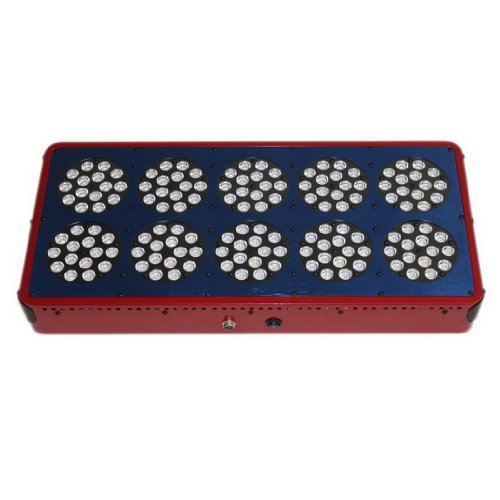 AUBIG 150 LEDs 450W LED Grow Light Panel Red Blue Ratio Indoor Hydroponic Plants Flowering Growth Light with US Plug