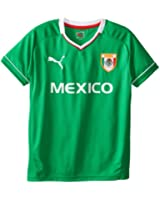 PUMA Big Boys' World Cup Mexico Shirt
