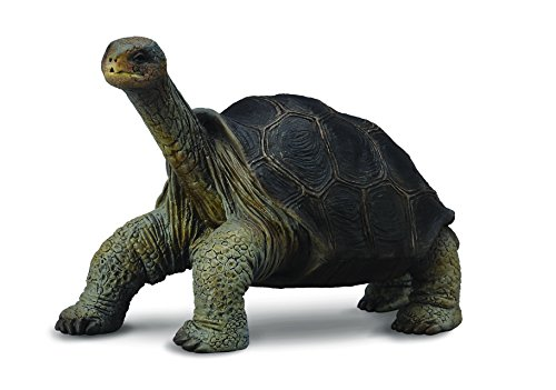 CollectA Pinta Island Tortoise Figure