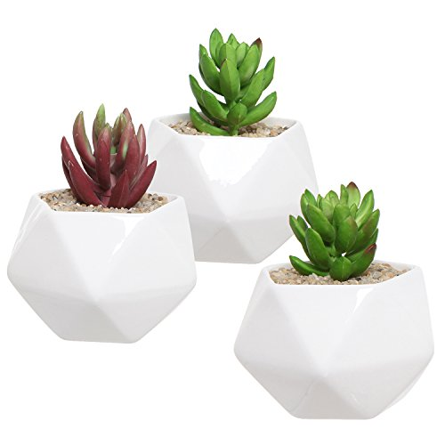 Set of 3 White Ceramic Geometric Design Succulent Plant Pots / Miniature Indoor Plant Holders - MyGift®